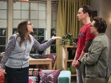 Amay y Sheldon discuten, una vez más